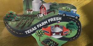 QISD Reaches Top Level in The Texas Department of Agriculture Farm Fresh Challenge