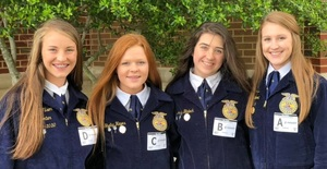Quitman FFA Ag Sales Team Headed to State
